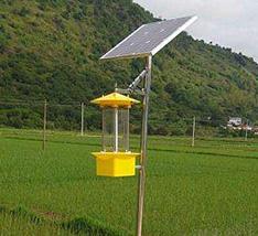 稻田太阳能杀虫灯